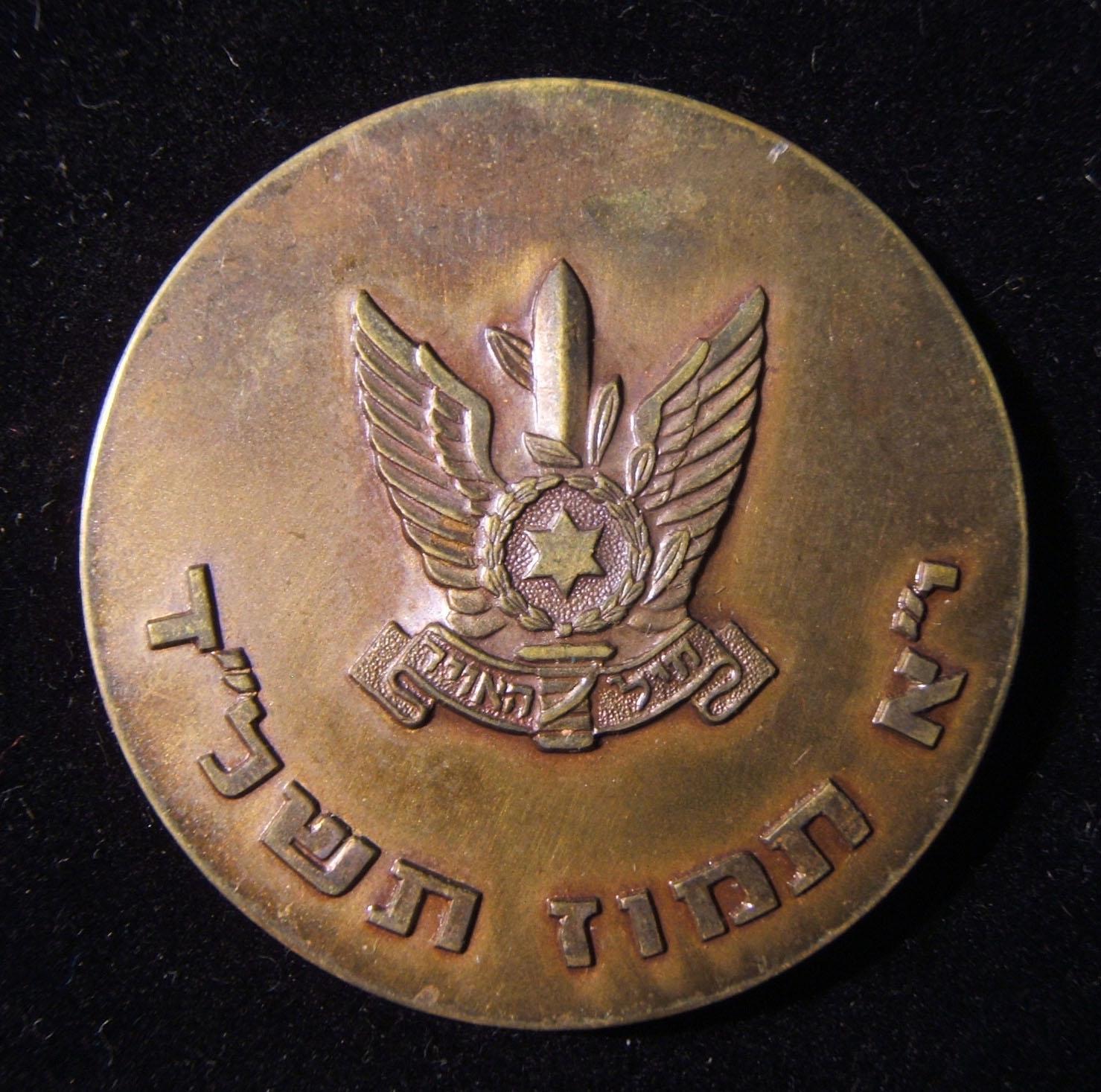 חיל האויר הישראלי חיל האוויר טייסת המעפילים