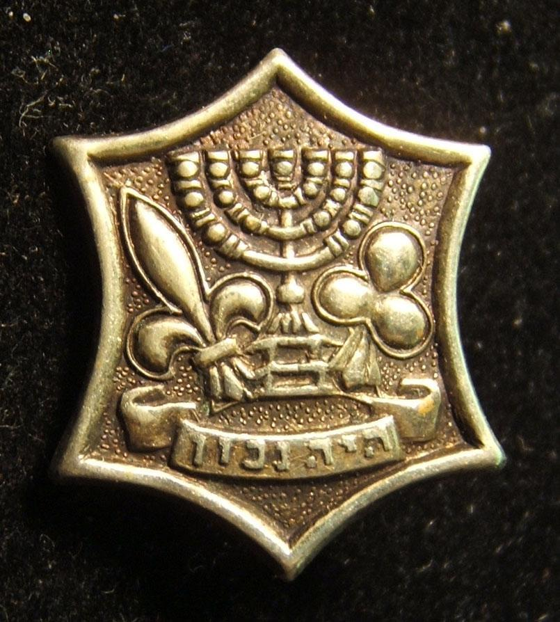 Lot 13x pins & emblems related to the Israeli Boy Scouts movement