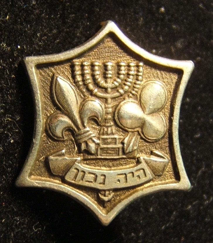 Israel - emblem pin of Israel Boy & Girl Scouts Federation, circa. 1950s-60s; not maker-marked (possibly Kretchmer); size: 16.5 x 19mm; weight: 2.9g: stylized Star of David w/e