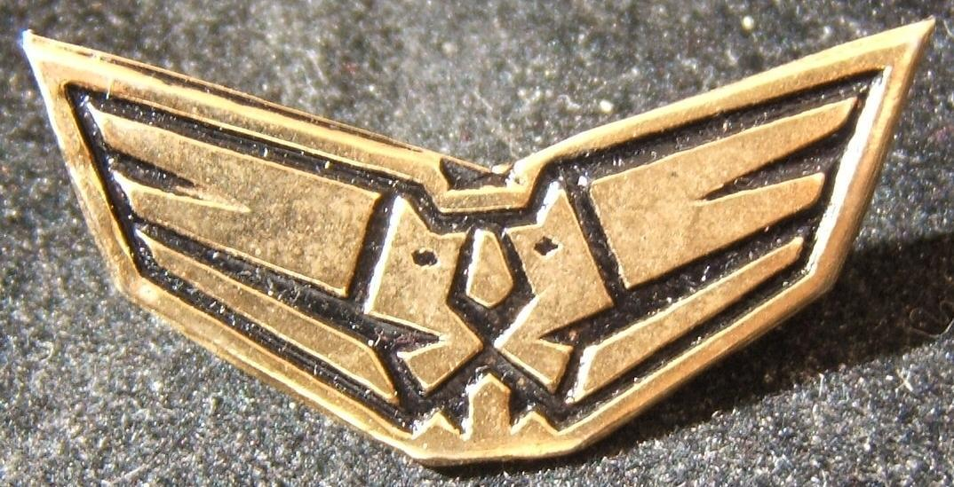 Tunic pin of the IAF's 107th