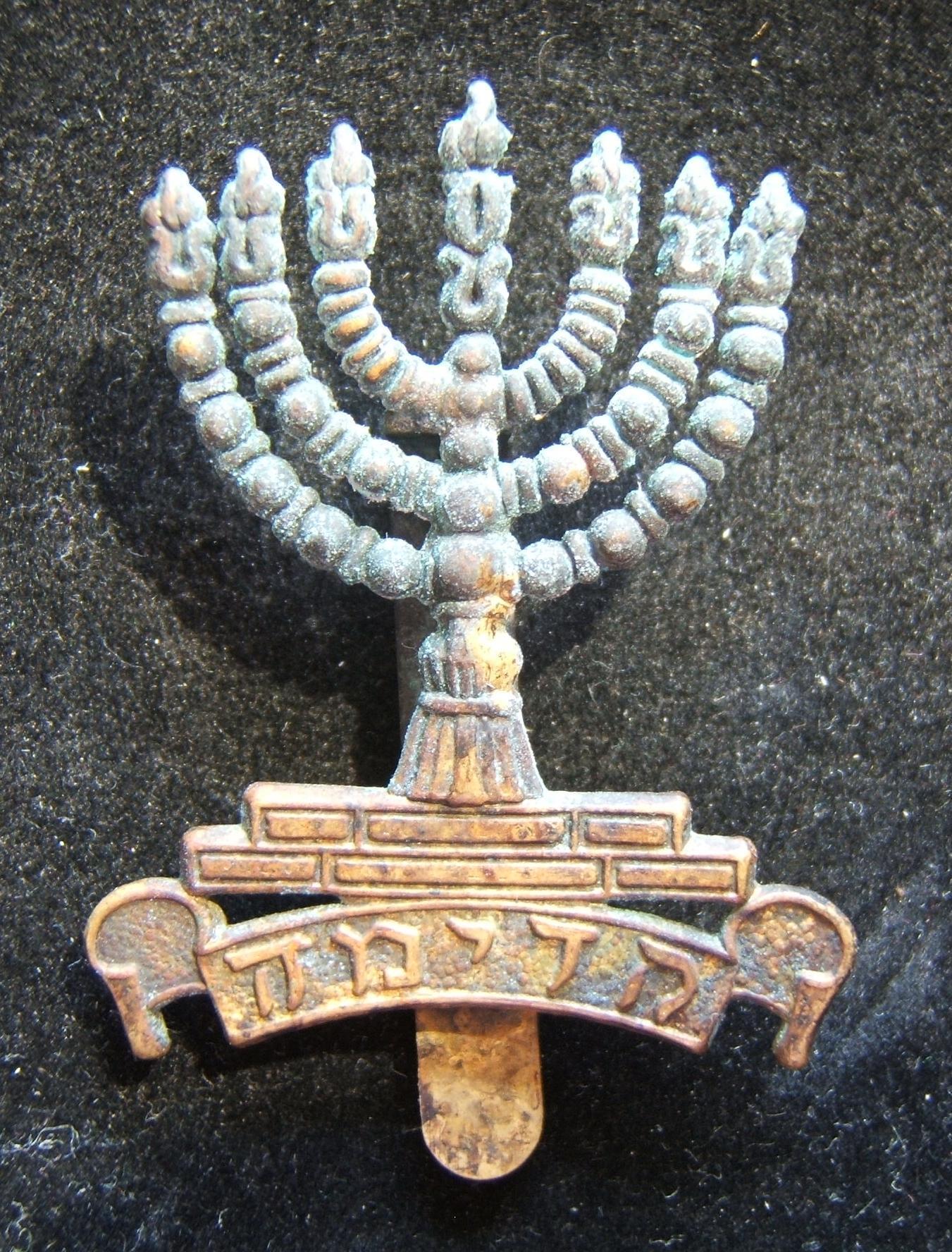 Palästina/Jischuw: Hut-Abzeichen des 1. Bataillons Judäa aus Messing, 1920; kein Hersteller gekennzeichnet; Größe: 3,55 x 5,05 cm; Gewicht: 9,35 g. Dies ist das Design mit der flac