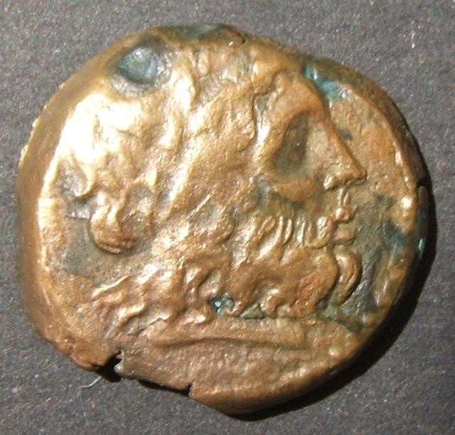 Ptolemaic Kingdom > Ptolemy II Philadelphos, 285-246 BCE; diademed head of Zeus-Ammon right / Eagle with closed wings standing left on thunderbolt, double cornucopias over shoulder