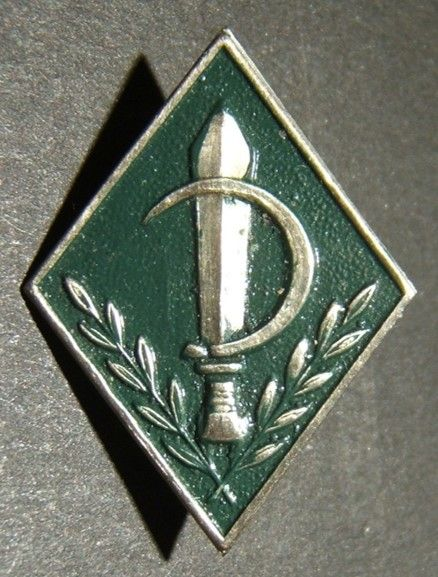 Israeli Army/IDF pin of the 933rd Nachal infantry Brigade, 1970's