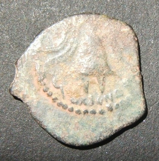 هيروديان يهودا هيرود أرتشيليوس بروتا القديمة؛ Hen-1196، Mesh-61، BMC-10