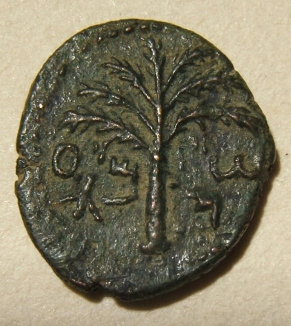 Judea Bar Kokhba revolt ancient bronze coin attributed to Year 3, 134-5 CE