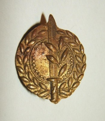 0110052-a_idf_israeli_army_general_staff_emblem_pin_1948_front