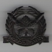Israeli Army general service corps emblem beret badge c.1960s-1970s