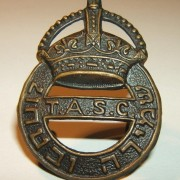 Hat badge of the 'TASC' Guard & Protection unit (Jewish 'Yishuv')