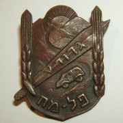 Palmach 5th Battalion
