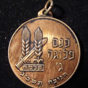 Palmach 'C Company' veterans assembly commemoration medal, 1963
