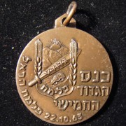 Palmach 5th Battalion Harel Brigade veterans conference commem. medal, 1963