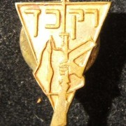 Irgun / Etzel emblem pin, circa. late 1930's; not maker marked; weight: 2.15g; size: 14mm x 18mm. Triangle-shaped, with Irgun emblem and motto