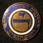 Austria: 14th Zionist Congress delegate's pin by M. Hammer, 1925