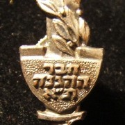 Haganah veteran's pin from the Tel Aviv unit, circa. 1950's; not maker-marked; weight: 2.55g. A single-piece construction incorporating the original emblem of the Tel Aviv force of