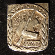 Pin of the Assembly of [former] soldiers of the Etzel (Irgun), 1956, with emblem of the organization surrounded by olive wreath; size: 17x20mm; weight: 0.95g. Unusually the organiz
