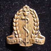 Tunic pin of the IDF medal corps, circa. 1948-early 1950's; weight: 1.3g.