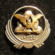 Emblem pin of the 119th