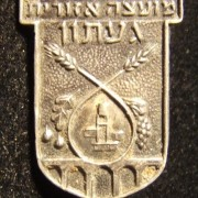 Ga'aton Regional Council pin, circa. 1950's; size: 15.75 x 20.5mm; weight: 1.6g. This regional council, in northern Israel, existed from around 1948/49 to 1982, when it became part