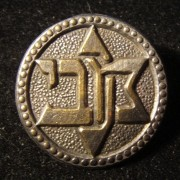 Israel: emblem pin of the Maccabi sports association, circa. 1950s, with safety-pin back and beeded border; not maker-marked; size: 20mm; weight: 1.5g.