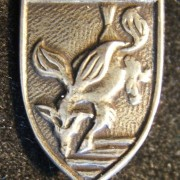 Tunic pin of the elite