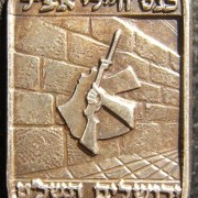 Pin commemorating the Assembly of Etzel Soldiers in Jerusalem, 1969; size: 12x21mm; weight: 4.2g; not maker-marked. Depicts the emblem of the Etzel superimposed on the Western Wall