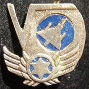 Tunic pin of the IAF's